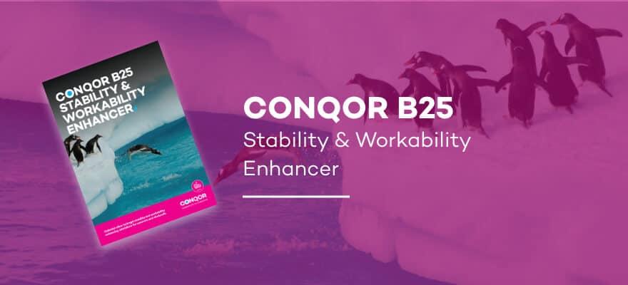 CONQOR B25 - Stability & Workability Enhancer